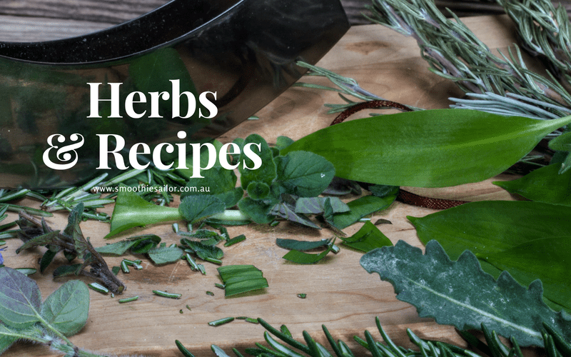 culinary-Herbs-how-to-grow-Recipes