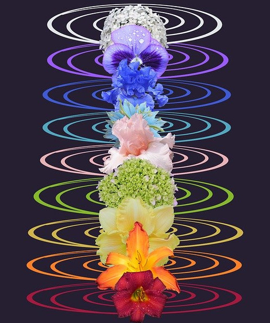 vibration and colour in the body