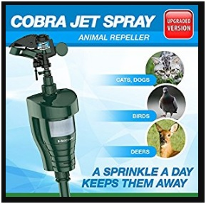 motion sensor sprinkler featured image