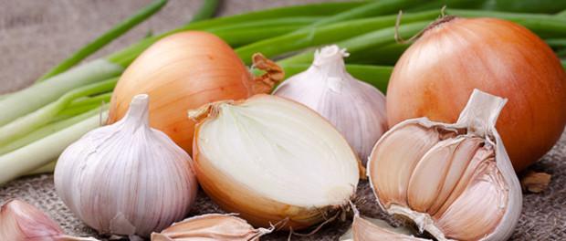 Risultati immagini per aglio cipolla