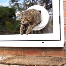 Sureflap Dual Scan - Smrod Cats