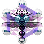 Energy Healing Services