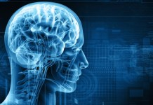 neuro Healing Services
