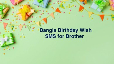 Bangla Birthday Wish SMS for Brother