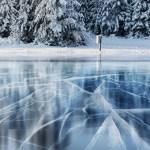 frozen fund relief