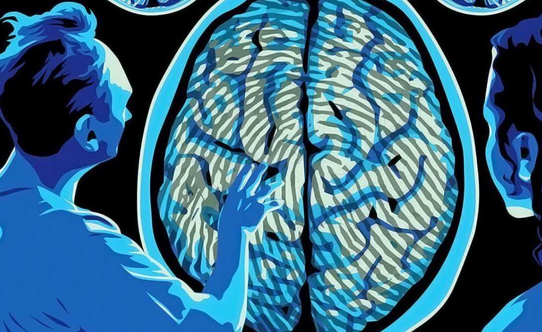 Как научить мозг учиться