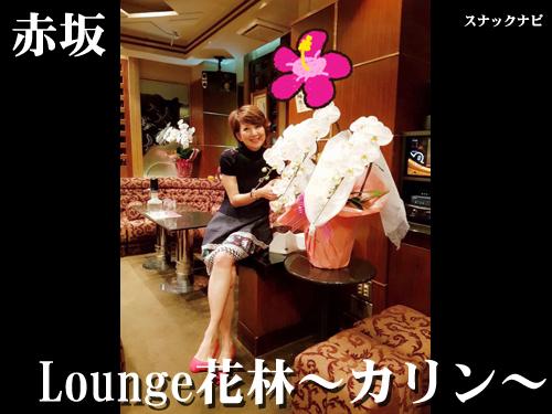 Lounge花林~カリン~(赤坂)