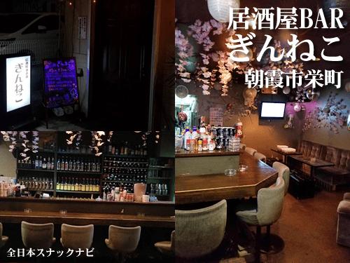 朝霞市栄町/居酒屋BARぎんねこ
