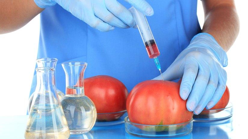 4 Hal Menarik Tentang Bioteknologi Yang Perlu Anda Tahu