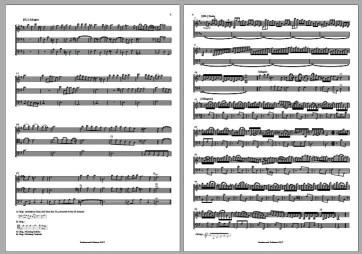 Vivaldi Trio Sonata RV 820 (Snakewood Editions)