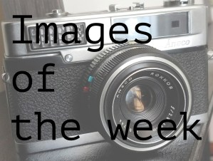 images of the week