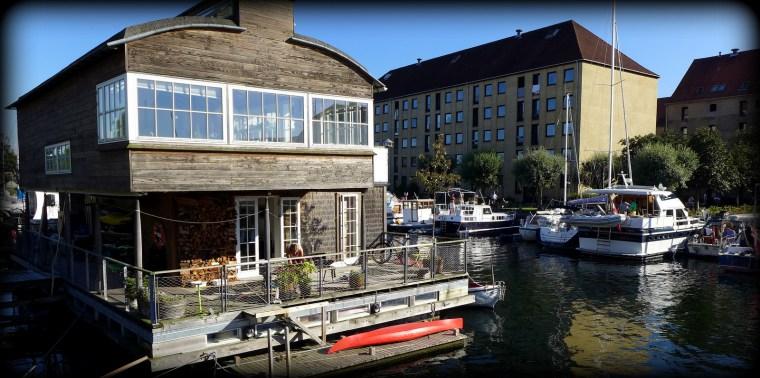 Oaser, Christianshavn 13.8.2015 142