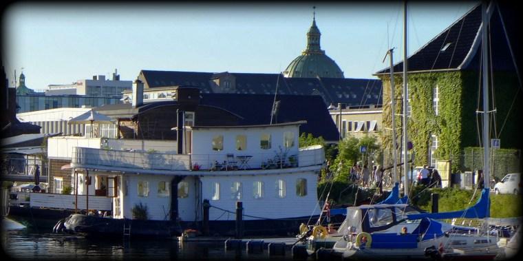 Oaser, Christianshavn 13.8.2015 203