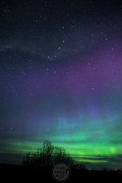The Big Dipper constellation makes a dramatic appearance in a sky full of Northern Lights