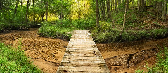 summer-pathway-creek-woods-pano-08163957