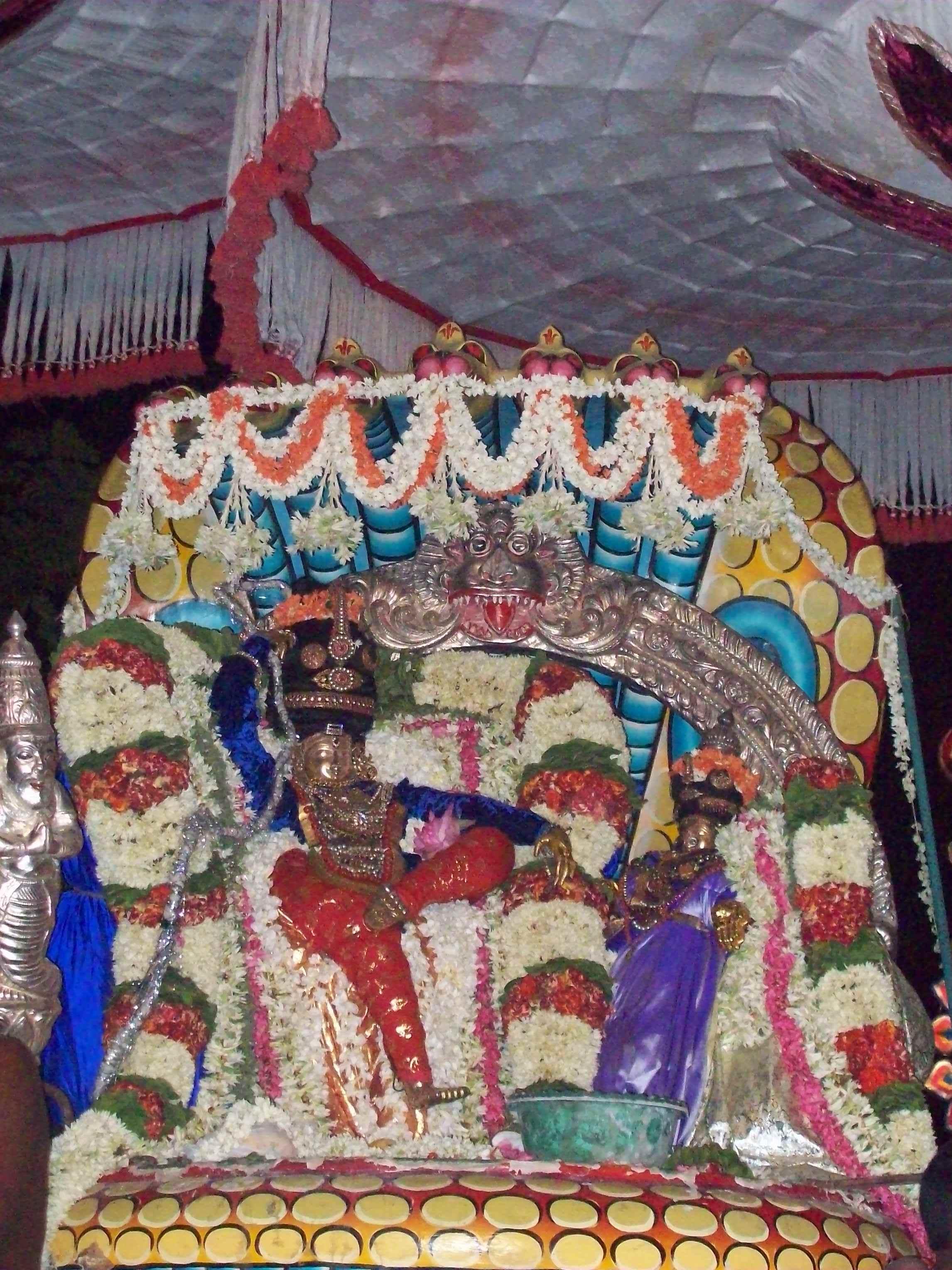 Siva-Naga-Vaganam-Velli-Eswarar-Sesha-Vaahanam