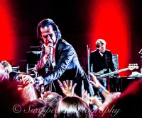 Nick-Cave-a9