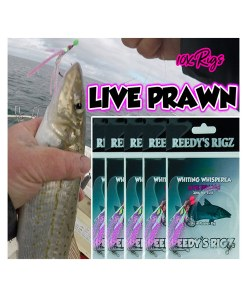 whitting rig, fishing rig, catching whitting , paternoster rig, bait fishing