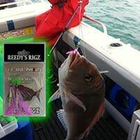 fishing report , fishing report melbourne snapper, fishing report frankston