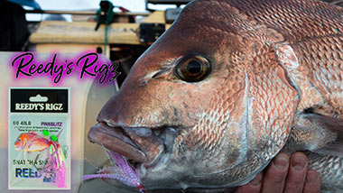 Snapper Rig diagram ,fishing Rig tying ,Bait ,Fishing ,How to Video fishing