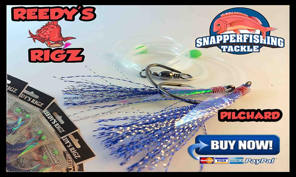 Paternoster 60lb  6//0 Hooks Mulloway Red 5 Snapper Rigs Flasher Fishing Rig