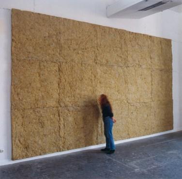 Laine de roche. Rock wool, hardboard, 600 x 320 cm / Laine de roche. Laine de roche collée sur isorel, 600 x 320 cm