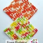 Free Pattern: Sturdy Wash Cloth