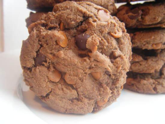 Double Chocolate Fudge Cinnamon Cookies Recipe   SnappyGourmet.com