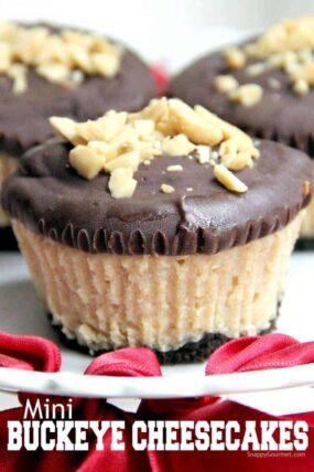 buckeye cheesecake closeup