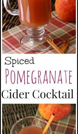 Spiced Pomegranate Cider Cocktail - easy fall drink recipe   SnappyGourmet.com