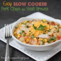 16 Weeks Slow Cooker Dinner Recipes | snappygourmet.com