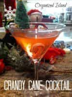 Christmas Cocktails (candy cane cocktail)   snappygourmet.com