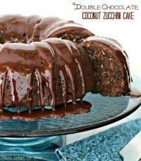 70+ Best Zucchini Recipes (Double Chocolate Coconut Zucchini Cake Recipe)   SnappyGourmet.com
