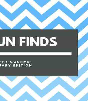 Fun Finds & Gift Ideas – January Edition