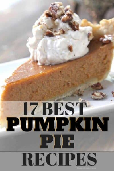 17 Best Pumpkin Pie recipes - traditional and not so traditional pumpkin pies from the classic to double layer, double crust, dairy free, vegan, and more! SnappyGourmet.com