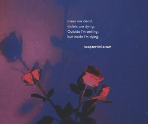aesthetic quotes deep dead roses snap scribble she he blind rainbow