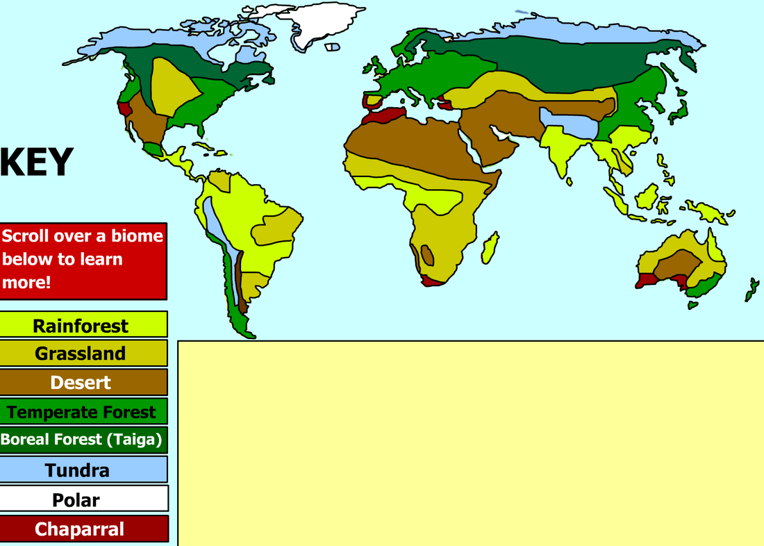 World Biome Map With Key Images