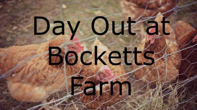 bocketts farm