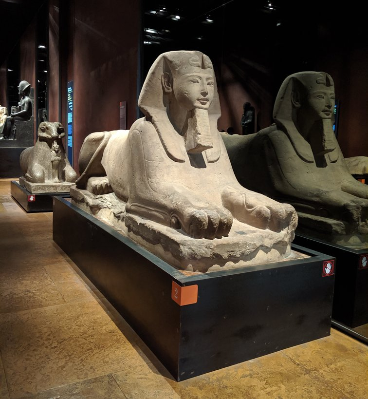 statue of sphinx turin egyptian museum