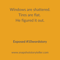 Snapshot Storyteller | Exposed #10WordStory | www.snapshotstoryteller.com | #amwriting #SnapshotStoryteller #creativestoryteller #creative #storyteller #creativewriter #IWrite #WriteOn #writersofinstagram#storytellersofinstagram #10wordstory #10wordstories