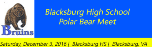 blacksburg-polar-bear-meet-12-10-16