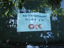 air_conditioner_on_dog.jpg