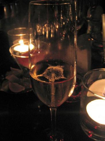 tryst_champagne.jpg