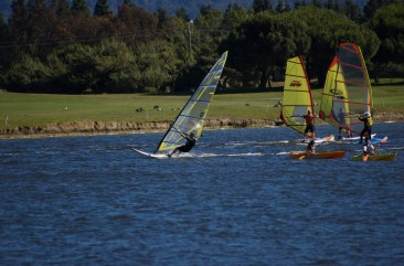 windsurfers_and_kayaks.jpg
