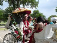 varghodo_carriage_maulik_shivani.jpg