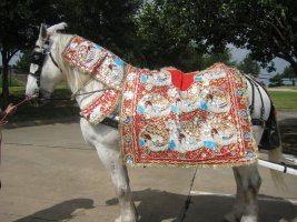 varghodo_horse.jpg