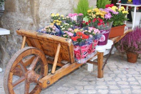 market_flowers.jpg