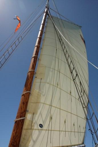 sail_2.jpg