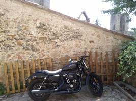 harley_davidson_motorcycle