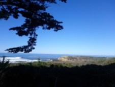 cambria_beach
